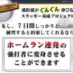 「野球」7日間スラッガー養成プロジェクト【検証とレビュー】特典付き その2